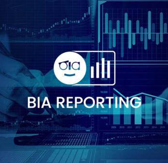 BIA Reporting